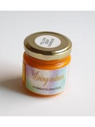 pigment w paśćie-żółć kadmowa ciemna imitacja
